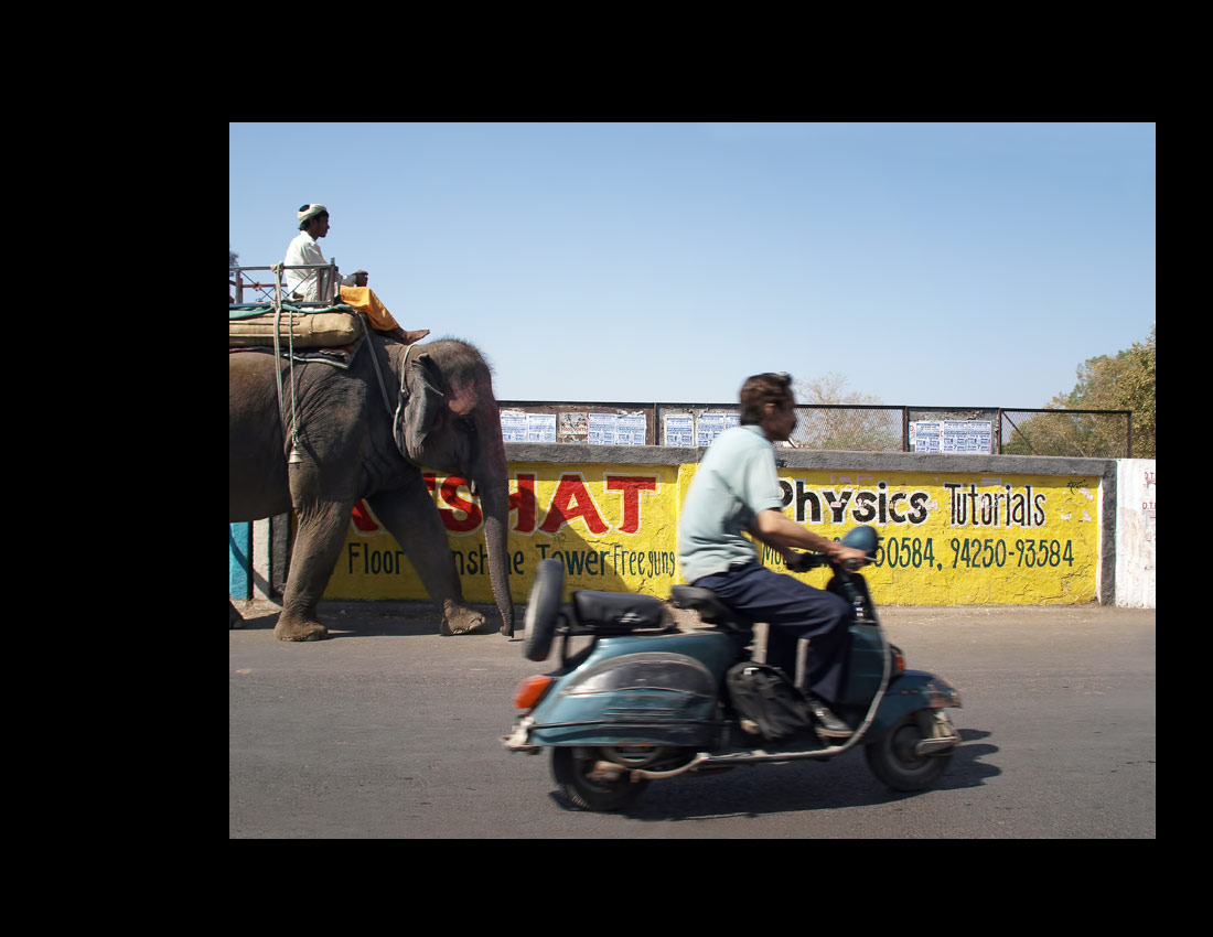 From the series In India ©2013 Howard Goldberg - Image 20
